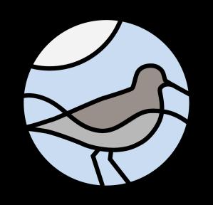 RIF_logo_mynd_lit